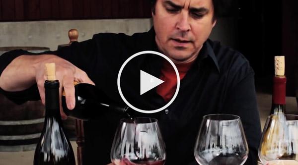 Oregon Pinot Peeps